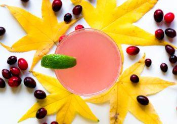 Gin-Verkostungen nun im Herbst